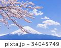 富士山と桜 34045749