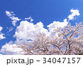 青空と桜 34047157