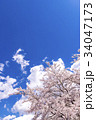 青空と桜 34047173