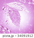 葉 製 水分のイラスト 34091912