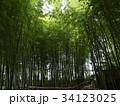 竹林公園 34123025