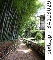 竹林公園 34123029