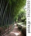 竹林公園 34123030