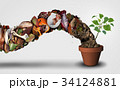 Compost And Composting 34124881