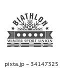 Biathlon logo badge. Vector Illustration. Winter 34147325