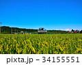 秋田内陸線 列車 風景の写真 34155551