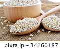 pearls barley grain seed on background 34160187