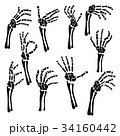 Set of hand skeleton shows the fingers 34160442
