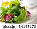 サラダ 洋食 グリーンサラダの写真 34165178