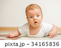 Four months old baby 34165836