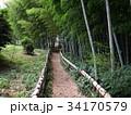 竹林公園 34170579