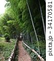 竹林公園 34170581