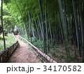 竹林公園 34170582