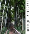 竹林公園 34170584