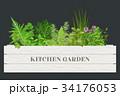 家庭菜園 容器 入れ物のイラスト 34176053