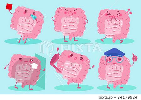 cute cartoon intestine 34179924