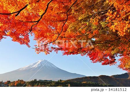 美しい日本の秋 富士山と紅葉 34181512