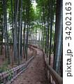 竹林公園 34202163