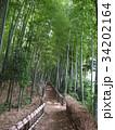 竹林公園 34202164