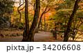 みの 美濃 秋の写真 34206608