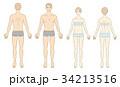 男女人体イラスト 34213516