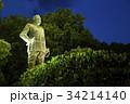 西郷隆盛像・鹿児島 34214140