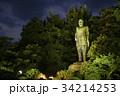 西郷隆盛像・鹿児島県 34214253