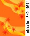 紅葉 秋 和柄のイラスト 34214644