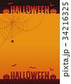 ハロウィン コウモリ 蜘蛛の巣のイラスト 34216325