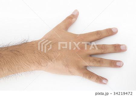 毛深い男性の右手 34219472