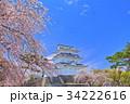 小田原城 天守閣 桜の写真 34222616