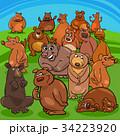 くま クマ 熊のイラスト 34223920