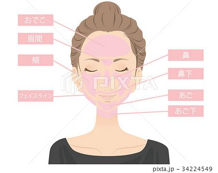 女性(美容) 34224549
