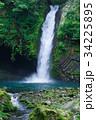 浄蓮の滝 滝 日本の滝百選の写真 34225895