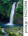 浄蓮の滝 滝 日本の滝百選の写真 34225896