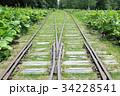 幌加駅跡 34228541