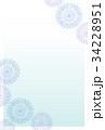 菊はがき01 34228951