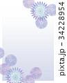 菊はがき04 34228954
