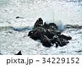 犬吠崎の荒波 34229152