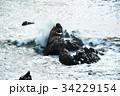 犬吠崎 波 荒波の写真 34229154
