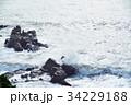 犬吠崎 波 荒波の写真 34229188
