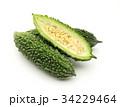 ゴーヤ 野菜 夏野菜の写真 34229464