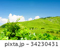草原 青空 雲の写真 34230431