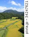 棚田 秋 谷間の写真 34247621