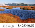 尾瀬 アヤメ平 池塘の写真 34254985