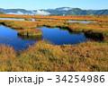 尾瀬 アヤメ平 池塘の写真 34254986