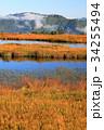 尾瀬 アヤメ平 池塘の写真 34255494