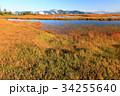 尾瀬 アヤメ平 池塘の写真 34255640