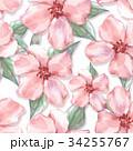 フローラル 花 水彩画のイラスト 34255767