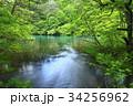 裏磐梯 五色沼 五色沼湖沼群の写真 34256962